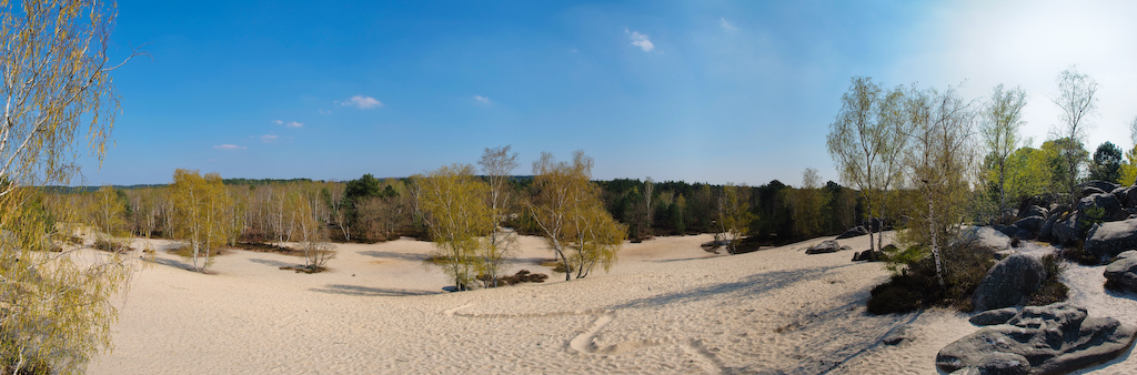 Panoramic view at Fontainebleau forest