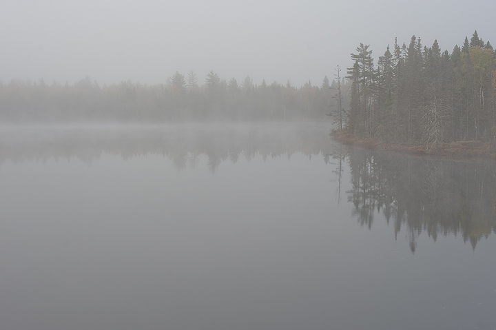 foggy morning in Canada